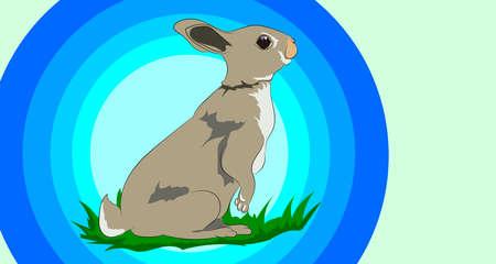 Wild rabbit sitting on the green grass. Illusztráció