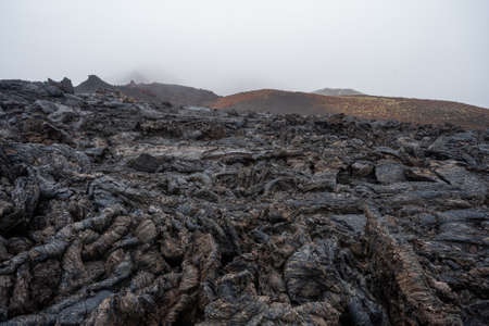 Close up of black lava swirl in Hawaii Volcanoes National Park Standard-Bild - 130773688
