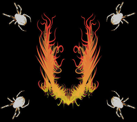 Photo with the image of four spiders on corners and fire in the middle photo