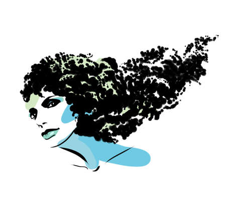 countenance: Illustration with the image of a beautiful, fashionable female hairdress.