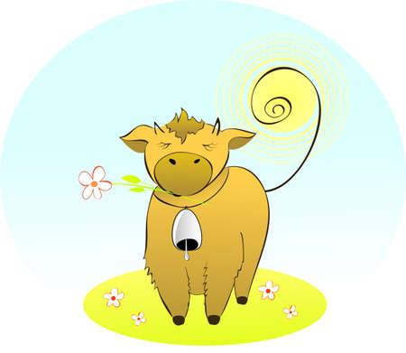 Beauty cow. photo