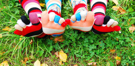Socks in autumn. Stock Photo