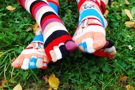 Socks in autumn. photo