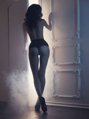Fashion art photo of young sensual lady in classical interior photo