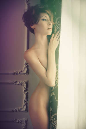 erotic nude women: Fashion art photo of nude elegant lady in classical interior Stock Photo