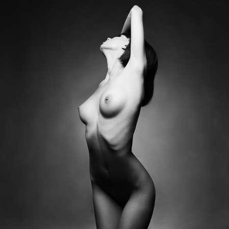 woman naked body: Fashion art studio photo of elegant naked lady Stock Photo