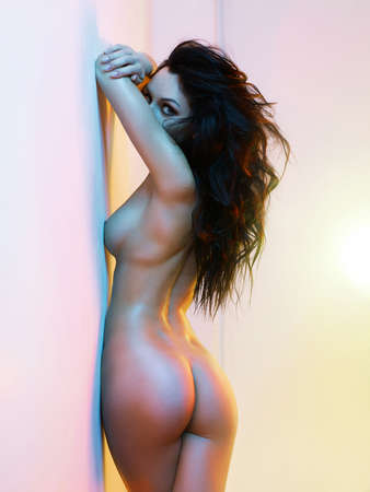 Mode-Kunst-Foto-Studio von elegante nackte Frau in leuchtenden Innen Standard-Bild - 64431451