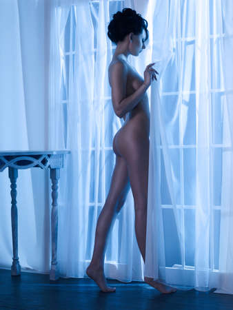 Art boudoir fashion photo of nude elegant woman at the window in the moonlight. Perfect body. Beauty and health Lizenzfreie Bilder
