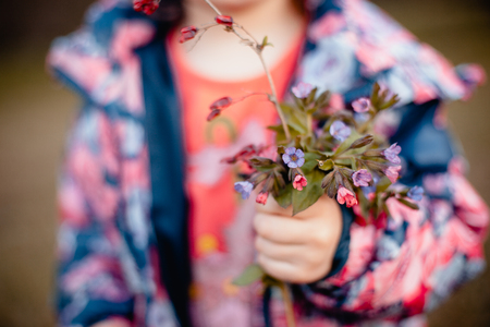 A small bouquet of spring flowers in the hands of a little girl Archivio Fotografico