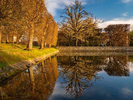 Bomen en hun weerspiegeling in het Oliwa Park. Vroege lente.
