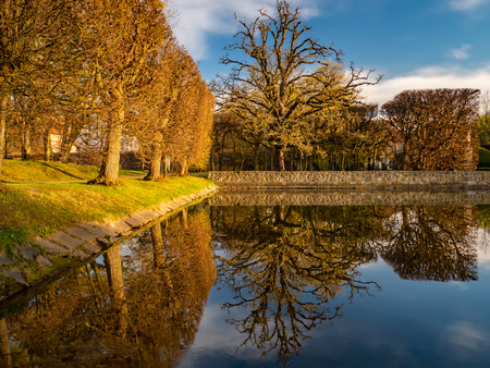 Trees and their reflection in the Oliwa Park. Early spring.