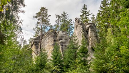 View of famous sandstone rock towers of Adrspach and Teplice Rocks and ancient pines growing between them. Adrspach National Park in northeastern Bohemia, Czech Republic, Europe Фото со стока