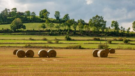 Beautiful landscape with straw bales in end of summer. Фото со стока
