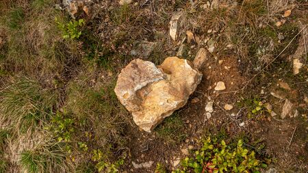 Stone in the shape of a heart.