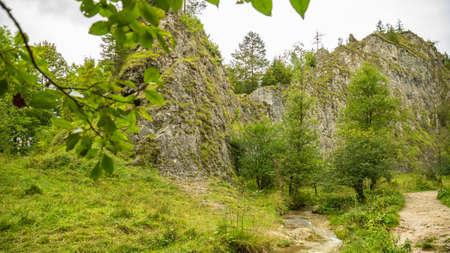 Homole gorge in Pieniny mountains, Poland Фото со стока