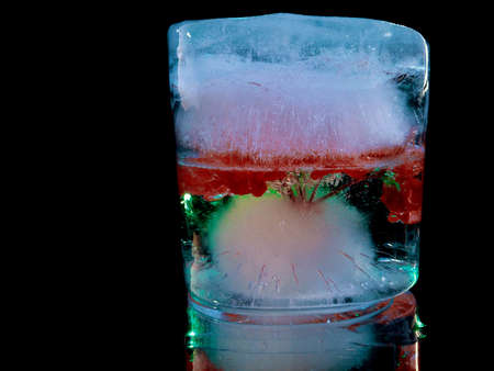 an abstract photograph of a red flower in ice with bubbles of frozen air resembles an exotic cocktail Stock fotó