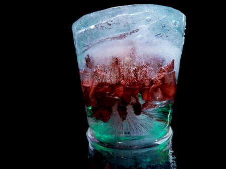 ice art with frozen red flower in creative photography