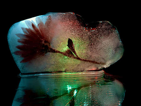 abstract photo of a flower in ice that glows in the dark Stock fotó