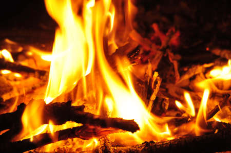 flames in campfire at night