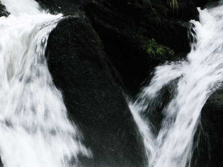 Wild waterfall in the forest