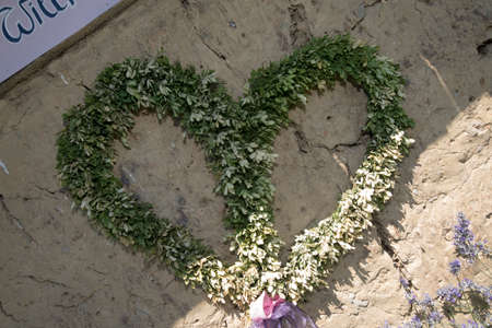 Green plant in shape of a heart