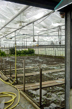 Broken glass in greenhouse after hailstorm Stock Photo