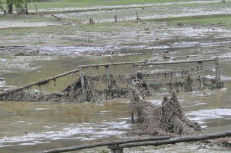 Flooded area in the countryside