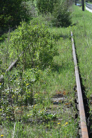 overgrown and abandoned railway line Banque d'images