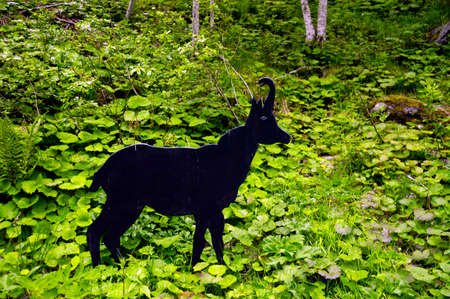 Mountain chamois statue in nature