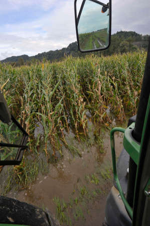 a flooded field, water damage in agriculture