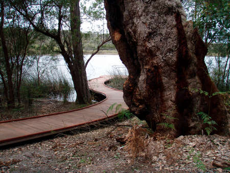 wooden bridge as a footpath that leads to a lake