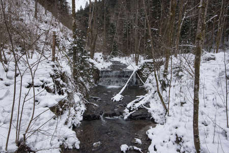 creek in a forest in the winter, snow covered landscape
