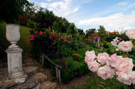 garden design in a big green garden on a sunny day