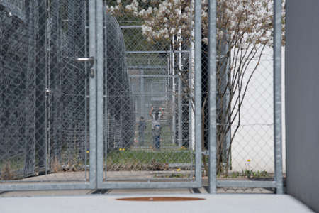 refugee or asylum seeker in immigration detention prior to hearing