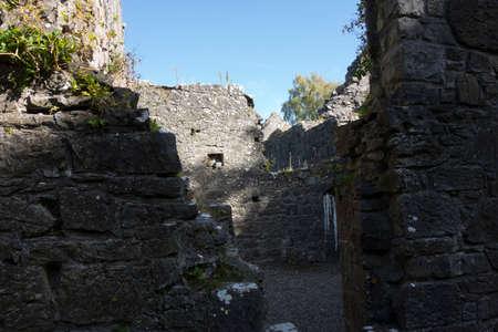 the roman catholic church in ireland, building, architecture and symbols