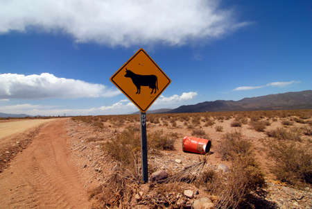 roads and traffic in the national park El Leoncito in Argentina