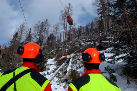 a forest cableway for transportation of wood and timber in forestry