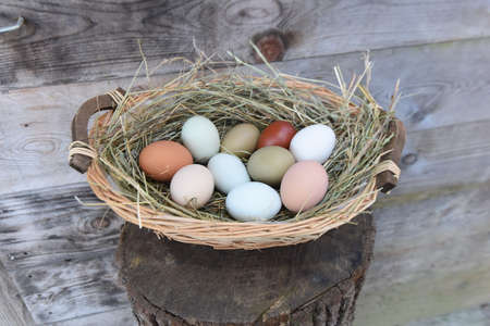 colored easter eggs as decoration and as an easter tradition