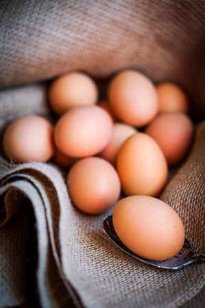 farm raised brown eggs photo