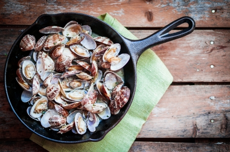 mussels 免版税图像