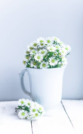 Daisies in white vase on wooden background Banco de Imagens - 57469246