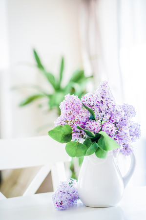 lilacs Imagens
