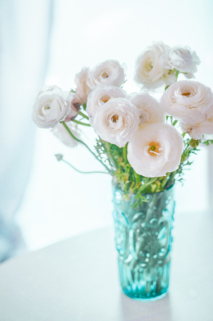 ranunculus photo