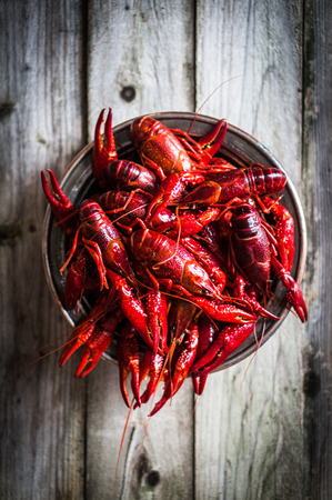 crawfish on wooden table Stok Fotoğraf - 34495538