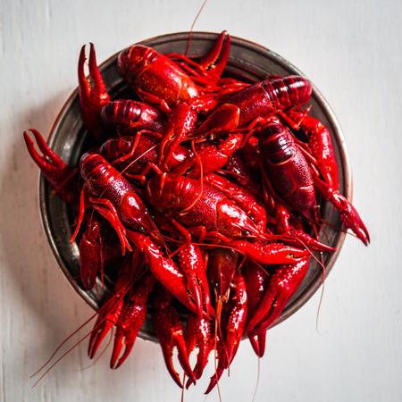 crayfish photo