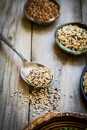 sprouted: Sprouted red and white quinoa