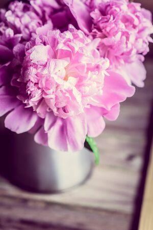 Pastel peonies Stock Photo