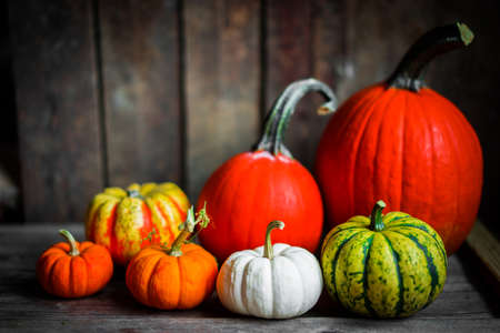 fall leaves: Colorful pumpkins and fall leaves on rustic wooden background