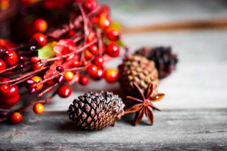 thanksgiving food: Autumn decoration on rustic background