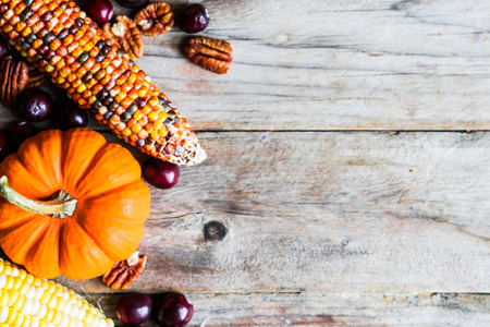 thanksgiving food: Pumpkins,corn,apples,nuts and cranberries on wooden background